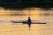 Woman sculling in a scenic river at sunrise with reflections in the water