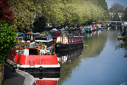 © Licensed to London News Pictures. 22/04/2019. London, UK. A canal boat makes it's way along the Grand Union Canal, in warm temperatures in the early morning at Little Venice in London on what has been a record breaking Easter bank holiday weekend for temperatures. Photo credit: Ben Cawthra/LNP