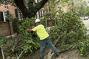 A city worker removes limbs from a downed tree blocking Meeting Street in historic downtown after Hurricane Matthew passed through causing flooding and light damage to the area October 8, 2016 in Charleston, South Carolina. The hurricane made landfall near Charleston as a Category 2 storm but quickly diminished as it moved north.