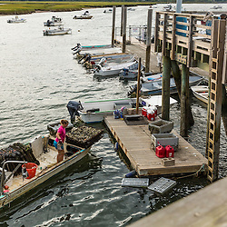 Kim Clark and Alex Krieckhaus, bring in the harvest from the Nonesuch Oysters farm to their dock at Pine Point in Scarborough, Maine.