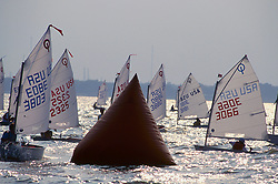 Stock photo of sailboats racing on the water