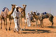Camel market, Al Ain, Abu Dhabi Emirate