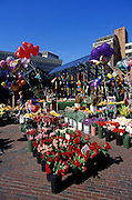 Image of a flower and balloon market outside Quincy Market along the Freedom Trail in Boston, Massachusetts, New England by Randy Wells