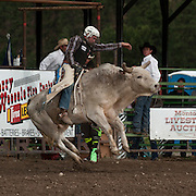 Matt Loomis attempts to ride Red Eye Rodeos SOB in the long round at the 2016 Darby MT EPB  Josh Homer photo.  Photo credit must be given on all uses.
