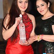 Laplandia sponsor the Grand Final MISS USSR UK 2019 at Hilton hotel London on 27 April 2019, London, UK.