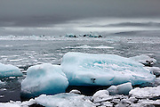 Icebergs and ice in the Jökulsárlón glacial lagoon in south-east Iceland