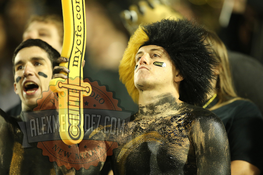 A UCF fan is seen in the stands during an NCAA football game between the South Florida Bulls and the 17th ranked University of Central Florida Knights at Bright House Networks Stadium on Friday, November 29, 2013 in Orlando, Florida. (AP Photo/Alex Menendez)