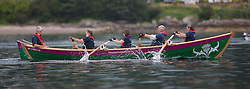 Largs Regatta Week 2015, hosted by Largs Sailing Club and Fairlie Yacht Club<br /> <br /> Firth of Clyde Community Rowing Club ( FOCCRC )regatta , Thistle<br /> <br /> Credit Marc Turner