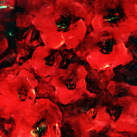 Poppies are a popular flower in art and literature. However, you have never experienced a depiction of poppies quite like this. These flowers are known for their hypnotic beauty. They have a long history with civilization in a few other aspects, too. This is a fine art piece that captures the appeal of these flowers in a profoundly unique way. The colors seem to wash together. The longer you stare at something like this, the deeper you can be pulled in to what feels like an ongoing current of color. The colors become red waves that wash over you. Available as canvas wall art or as framed wall art. .<br />