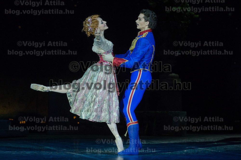 Members of the Hungarian National Ballet perform during the dress rehearsal of the Merry Widow choreographed by Ronald Hynd in Budapest, Hungary on February 18, 2014. ATTILA VOLGYI