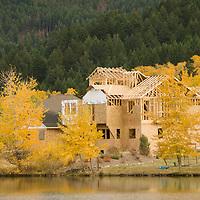 Fall-colored cottonwoods & aspens new house & Mystic Heights Pond, near Bozeman Montana.