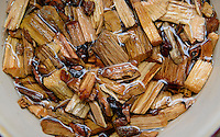 Hickory wood chips used to add flavorful smoke to barbecue are soaked in water before use.