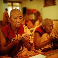 Morning Tara Puja in Geden Choeling Nunnery, Dharamsala