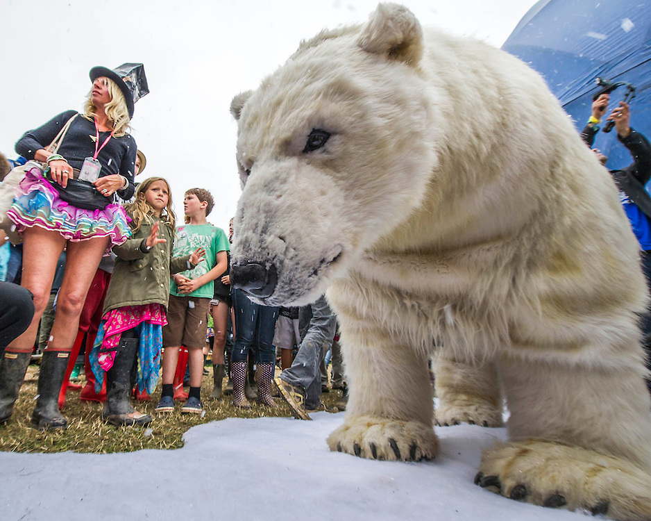 A Greenpeace campaign to save the Artic involves a snowball fight with real snow and a lifesize polar bear with two actors inside. The 2013 Glastonbury Festival, Worthy Farm, Glastonbury. 28 June 2013.  © Guy Bell, guy@gbphotos.com, all rights reserved