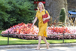 © Licensed to London News Pictures. 23/07/2019. London, UK. Chief Secretary to the Treasury Liz Truss  arrives in Downing Street to attend Theresa May's final Cabinet meeting. Photo credit: Dinendra Haria/LNP
