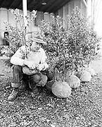 Y-491121B-03. Brownell Holly farm Nov 21, 1949. (on the Clackamas river near Oregon City)