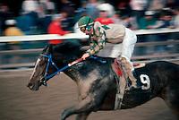 Keeneland Horse Racing Kentucky