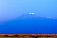 Mount Kilimanjaro seen from Amboseli National Park, Kenya