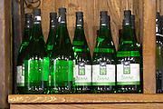 Bottles of Kum Zilavka on a shelf in the wine shop. Hercegovina Produkt winery, Citluk, near Mostar. Federation Bosne i Hercegovine. Bosnia Herzegovina, Europe.
