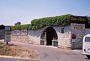 Au Clos de l'Echo vineyard, Vignobles Couly-Dutheil, Chinon, France 1976