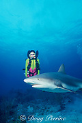 Michelle Cove uses a semi-closed rebreather to dive with  a Caribbean reef shark, Carcharhinus perezi, New Providence Island, Tongue of the Ocean, near Nassau, Bahamas ( Western Atlantic Ocean ) MR 246
