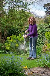Feeding a lawn using a liquid fertiliser