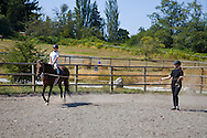 Young caucasian girl riding english style in an arena, having a horseback riding lesson