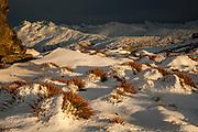Wild Spaniards, Garvie range, winter dawn from above Nevis valley, Central Otago