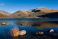 Looking towards Scafell Pike across reeds and rock in calm lake (Wastwater)