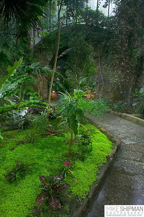 South America, Uruguay, Rocha, Parque Nacional Santa Teresa, invernaculo, conservatory, interior