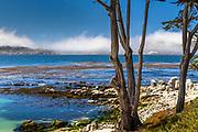 Carmel River Beach, Carmel-by-the-Sea, California, looking toward Point Lobos, and fog creeping onto the shore.