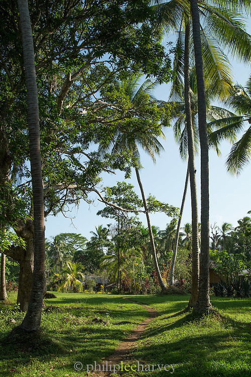 Path leading into village, Tufi, Cape Nelson, Oro Province, Papua New Guinea