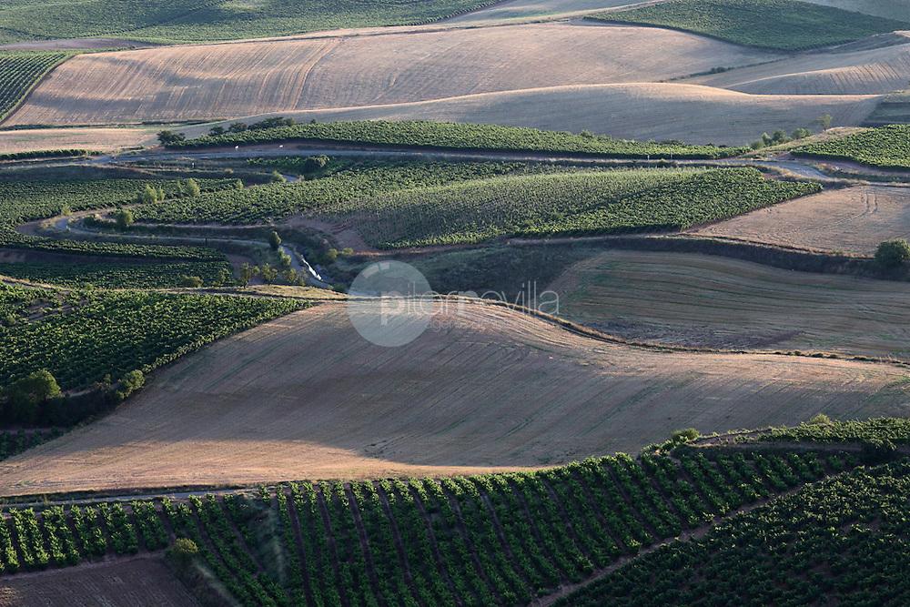 Hormilla. La Rioja ©Daniel Acevedo / PILAR REVILLA