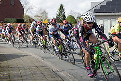 Stephanie Pohl in the bunch at Dwars door Vlaanderen 2017. A 114 km road race on March 22nd 2017, from Tielt to Waregem, Belgium. (Photo by Sean Robinson/Velofocus)