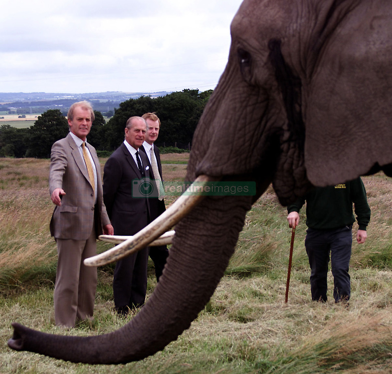 """File photo dated 08/07/00 of The Duke of Edinburgh (centre) accompanied by Lord Derby (right) and Mr David Ross, Manager of Knowles Safari Park, meeting with """"Chota"""" the oldest elephant in the herd at the North West Safari Park. The Duke of Edinburgh has died, Buckingham Palace has announced. Issue date: Friday April 9, 2020.. See PA story DEATH Philip. Photo credit should read: David Kendall/PA Wire"""