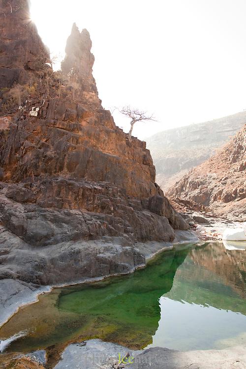 Wadi Dirhir, a fresh water spring at Dixsam, Socotra, Yemen