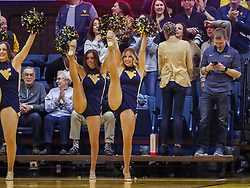 Mar 20, 2019; Morgantown, WV, USA; A West Virginia Mountaineers dancer performs during the first half against the Grand Canyon Antelopes at WVU Coliseum. Mandatory Credit: Ben Queen