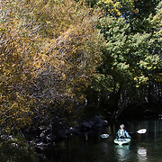 The Fall season in the Eastern Sierras is one of the most beautiful seasons to visit. A lone kayaker makes her way down the river leading to Silver Lake.