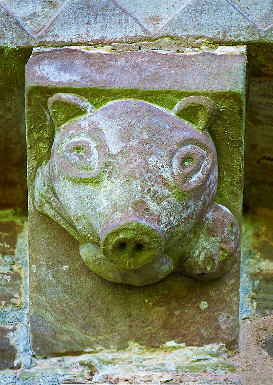 Norman Romanesque exterior corbel no 46 - sculpture of head, half man half pig. The Norman Romanesque Church of St Mary and St David, Kilpeck Herefordshire, England. Built around 1140 .<br /> <br /> Visit our MEDIEVAL PHOTO COLLECTIONS for more   photos  to download or buy as prints https://funkystock.photoshelter.com/gallery-collection/Medieval-Middle-Ages-Historic-Places-Arcaeological-Sites-Pictures-Images-of/C0000B5ZA54_WD0s