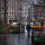 Man walks his dog under the rain in Madison Square park, Manhattan