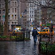 Man walks his dog under the rain in Madison Square park, Manhattan