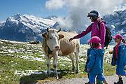 Snow in August on Männlichen Royal Walk, above Lauterbrunnen Valley, Switzerland, the Alps, Europe. For licensing options, please inquire.