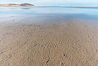 Exposed mudflats on the Heuningnes River Estuary, De Mond Nature Reserve, CapeNature, Western Cape, South Africa
