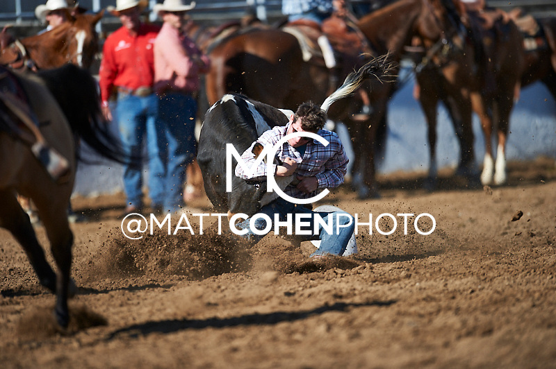 Steer wrestler Dalton Massey of Hermiston, OR competes at the Clovis Rodeo in Clovis, CA.<br /> <br /> <br /> UNEDITED LOW-RES PREVIEW<br /> <br /> <br /> File shown may be an unedited low resolution version used as a proof only. All prints are 100% guaranteed for quality. Sizes 8x10+ come with a version for personal social media. I am currently not selling downloads for commercial/brand use.