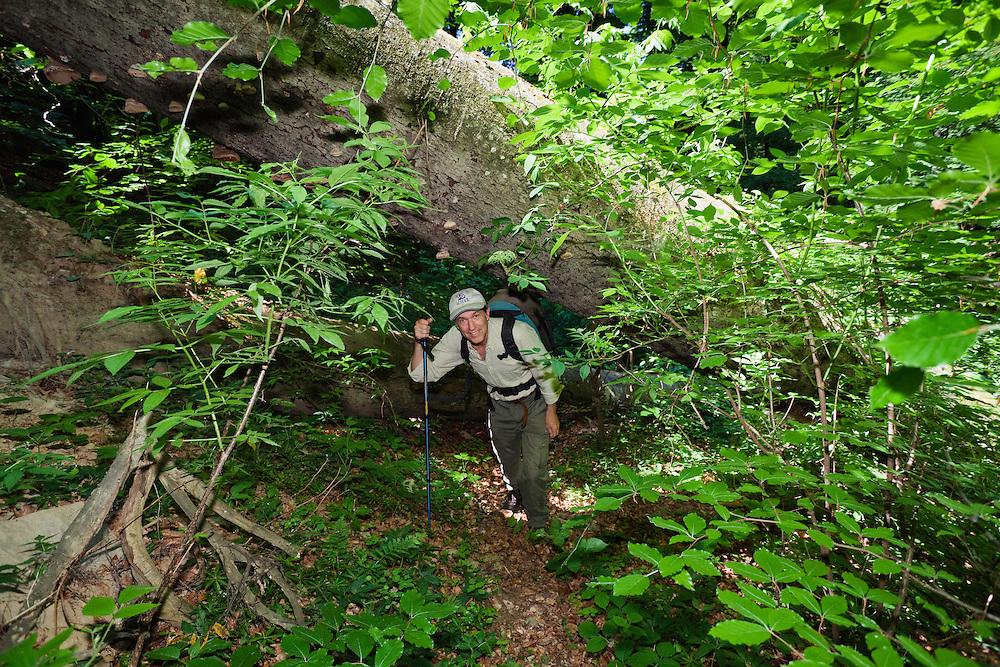 Nature Photographer Konrad Wothe in Rozok Primeval Forest, Poloniny National park, Western Carpathians, Slovakia, Europe
