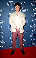Danny Midwinter at the  Miss Scarlet and the Duke World Premiere TV screening at the St. Pancras Renaissance Hotel. London. 03.12.19