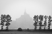 Mist and trees, Mont Saint-Michel, Normandy, France