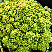 Romanesco broccoli. Composite of 87 focus-stacked images taken with a Leica SL2 camera and 50 mm f/1.4 lens (ISO 50, 50 mm, f/1.4, 1/10 sec, multi-shot mode). Images processed with Capture One Pro and Helicon Focus (Method C (Pyramid),  Smoothing 4).