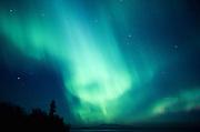 Alaska. Northern Lights, Aurora Borealis, glowing green gases streak the sky.