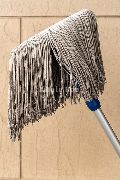 mopping broom